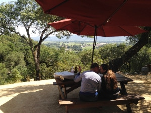 Rutherford Hill dog friendly wineries picnic grounds simply driven
