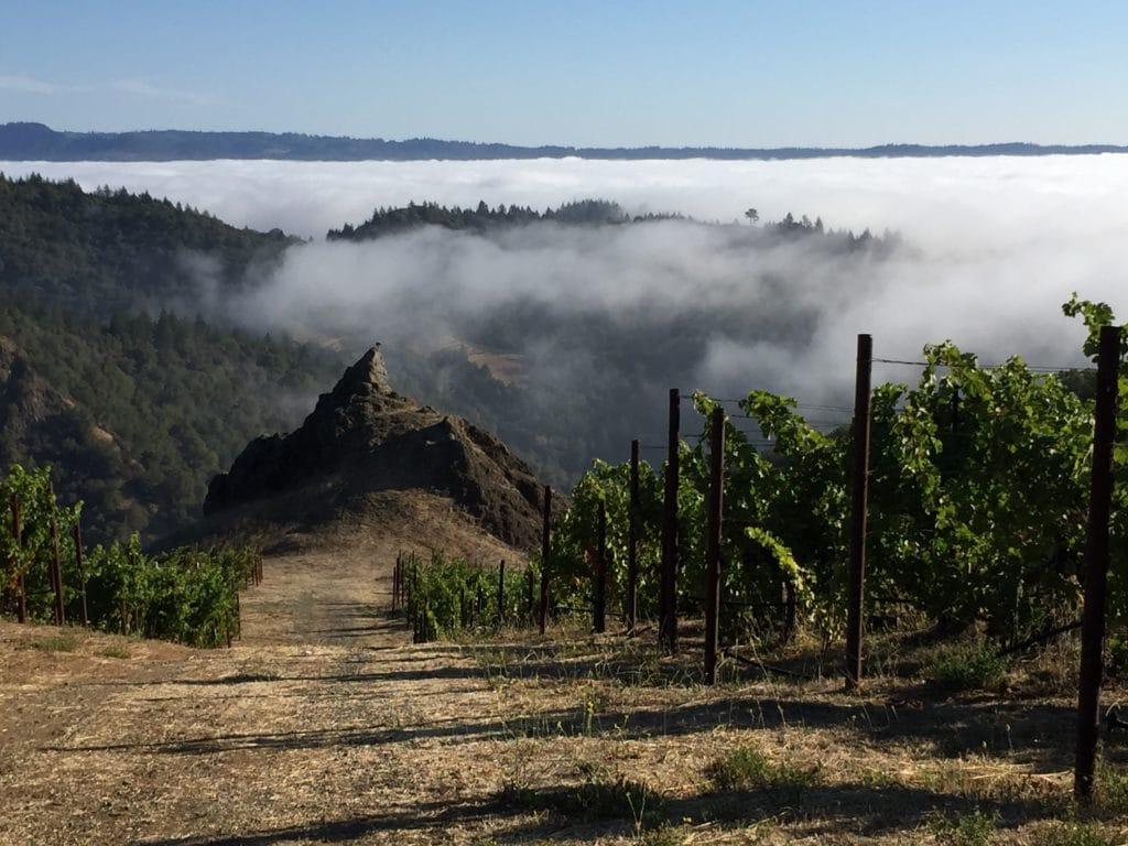 Spring Mountain Wine Tours